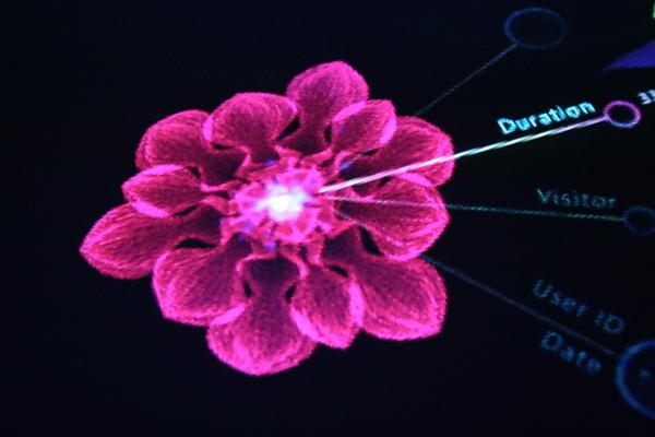 我的夢想之花尋覓紀 ----胚胎原型3